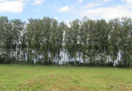 Image for Московская область, Мытищинский район,<br> поселок Монаково