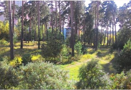 Image for г. Раменское пос., Красный Октябрь, д. 35В
